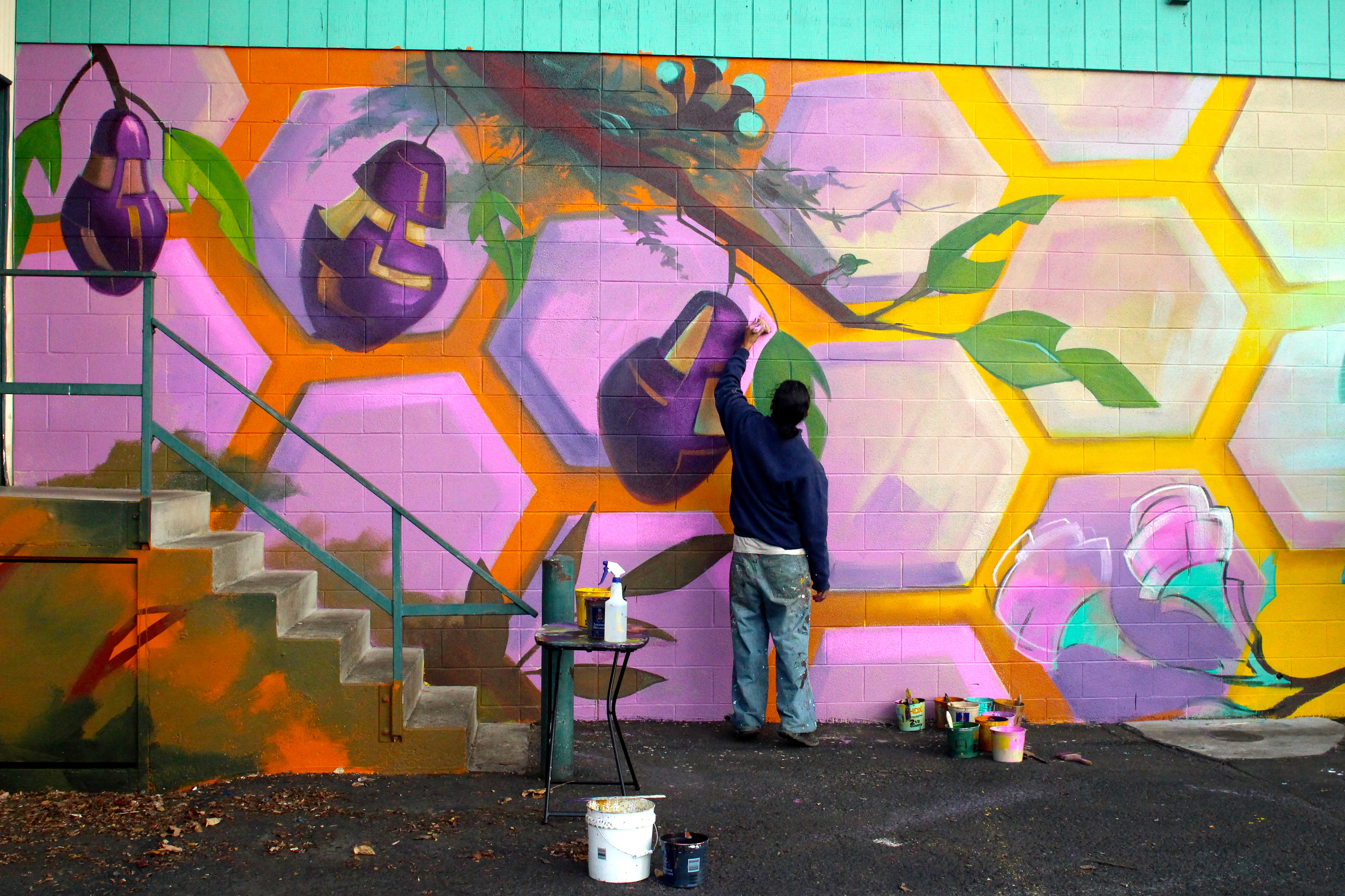 """Several internationally known street muralists will be putting their art on walls throughout downtown Eugene during a week-long """"Eugene Walls"""" celebration that starts July 30"""